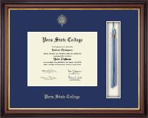 Peru State College Diploma Frame - Tassel Edition Diploma Frame in Regency Gold