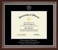 University of Illinois Diploma Frame - Silver Embossed Diploma Frame in Devonshire