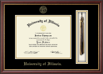 University of Illinois Diploma Frame - Tassel Edition Diploma Frame in Newport