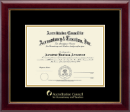 Accreditation Council for Accountancy and Taxation Certificate Frame - Gold Embossed Certificate Frame in Gallery