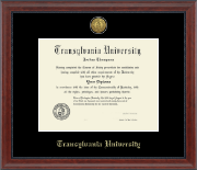 Transylvania University Diploma Frame - Gold Engraved Medallion Diploma Frame in Signature