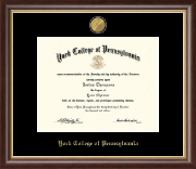 York College of Pennsylvania Diploma Frame - 23K Medallion Diploma Frame in Hampshire