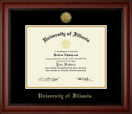 University of Illinois Diploma Frame - Gold Engraved Medallion Diploma Frame in Cambridge
