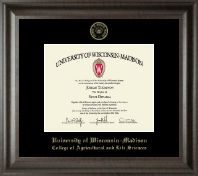 University of Wisconsin Madison Diploma Frame - Gold Embossed Diploma Frame in Acadia