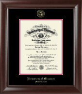 University of Missouri Saint Louis Diploma Frame - Gold Embossed Diploma Frame in Rainier