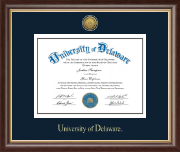 University of Delaware Diploma Frame - Gold Engraved Medallion Diploma Frame in Hampshire