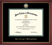 York College of Pennsylvania Diploma Frame - Masterpiece Medallion Diploma Frame in Kensington Gold