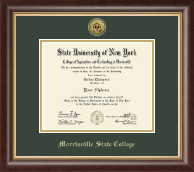 Morrisville State College Diploma Frame - Gold Engraved Medallion Diploma Frame in Hampshire