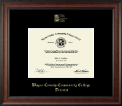 Wayne County Community College District Diploma Frame - Gold Embossed Diploma Frame in Studio