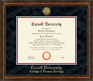 Cornell University Diploma Frame - Gold Engraved Medallion Diploma Frame in Ashford