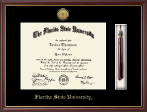 Florida State University Diploma Frame - Gold Engraved Tassel Edition Diploma Frame in Newport