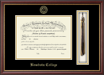 Bowdoin College Diploma Frame - Tassel Edition Diploma Frame in Newport