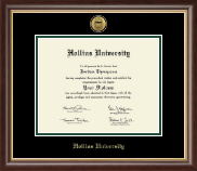 Hollins University Diploma Frame - Gold Engraved Medallion Diploma Frame in Hampshire