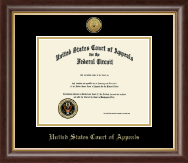 The United States Court of Appeals Certificate Frame - Gold Engraved Medallion Certificate Frame in Hampshire