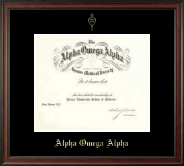 Alpha Omega Alpha Certificate Frame - Single Matted Embossed Frame in Studio