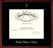 Alpha Omega Alpha Certificate Frame - Single Matted Embossed Frame in Camby