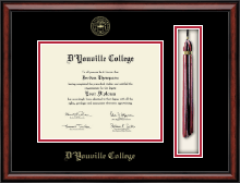 D'Youville College Diploma Frame - Tassel Edition Diploma Frame in Southport