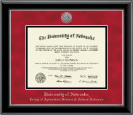 University of Nebraska Diploma Frame - Silver Engraved Medallion Diploma Frame in Onyx Silver