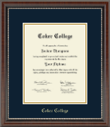 Coker College Diploma Frame - Gold Embossed Diploma Frame in Chateau