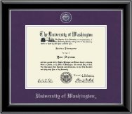 University of Washington Diploma Frame - Pewter Masterpiece Medallion Diploma Frame in Onyx Silver
