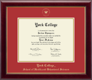 York College in New York Diploma Frame - Gold Embossed Diploma Frame in Gallery