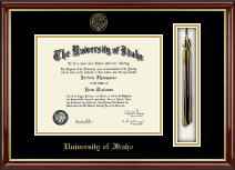 University of Idaho Diploma Frame - Tassel Edition Diploma Frame in Southport Gold