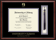University at Albany State University of New York Diploma Frame - Tassel Edition Diploma Frame in Southport
