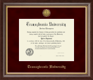 Transylvania University Diploma Frame - Gold Engraved Medallion Diploma Frame in Hampshire
