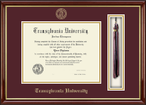Transylvania University Diploma Frame - Tassel Edition Diploma Frame in Southport Gold