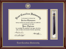 East Carolina University Diploma Frame - Tassel Edition Diploma Frame in Southport Gold