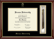 Brenau University Diploma Frame - Tassel Edition Diploma Frame in Southport Gold