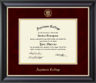 Aquinas College in Michigan Diploma Frame - Gold Embossed Diploma Frame in Noir
