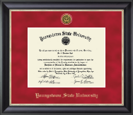 Youngstown State University Diploma Frame - Gold Engraved Medallion Diploma Frame in Noir