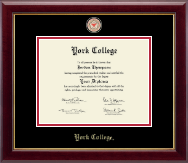 York College in New York Diploma Frame - Masterpiece Medallion Diploma Frame in Gallery