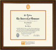 The University of Tennessee Knoxville Diploma Frame - Dimensions Diploma Frame in Westwood