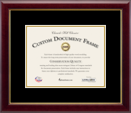document frames and picture frames - Document Frames