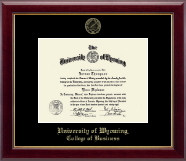 University of Wyoming Diploma Frame - Gold Embossed Diploma Frame in Gallery