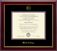 Wells College Diploma Frame - Gold Embossed Diploma Frame in Gallery