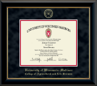 University of Wisconsin Madison Diploma Frame - Gold Embossed Diploma Frame in Onyx Gold