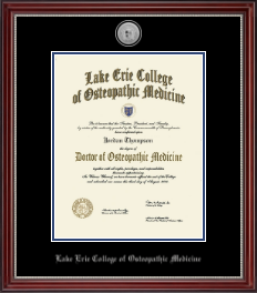 Lake Erie College of Osteopathic Medicine Diploma Frame - Silver Engraved Medallion Diploma Frame in Kensington Silver
