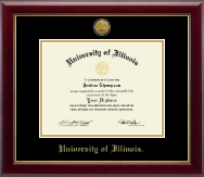 University of Illinois Diploma Frame - Gold Engraved Medallion Diploma Frame in Gallery
