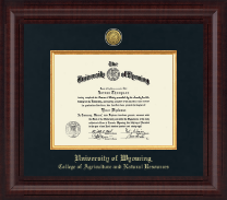 University of Wyoming Diploma Frame - Presidential Gold Engraved Diploma Frame in Premier