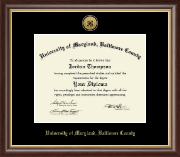 University of Maryland, Baltimore County Diploma Frame - Gold Engraved Medallion Diploma Frame in Hampshire