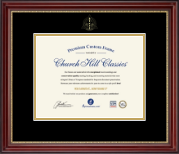 Dentistry Diploma Frames and Gifts Diploma Frame - Gold Embossed Dental School Diploma Frame in Kensington Gold