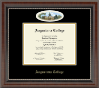 Augustana College Illinois Diploma Frame - Campus Cameo Diploma Frame in Chateau