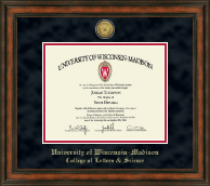 University of Wisconsin Madison Diploma Frame - Gold Engraved Medallion Diploma Frame in Ashford