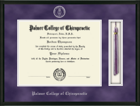 Palmer College of Chiropractic Iowa Diploma Frame - Tassel Edition Diploma Frame in Omega