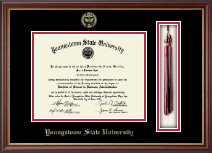 Youngstown State University Diploma Frame - Tassel Edition Diploma Frame in Newport