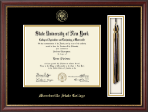 Morrisville State College Diploma Frame - Tassel Edition Diploma Frame in Newport