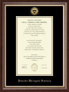 Princeton Theological Seminary Diploma Frame - Gold Engraved Medallion Diploma Frame in Hampshire
